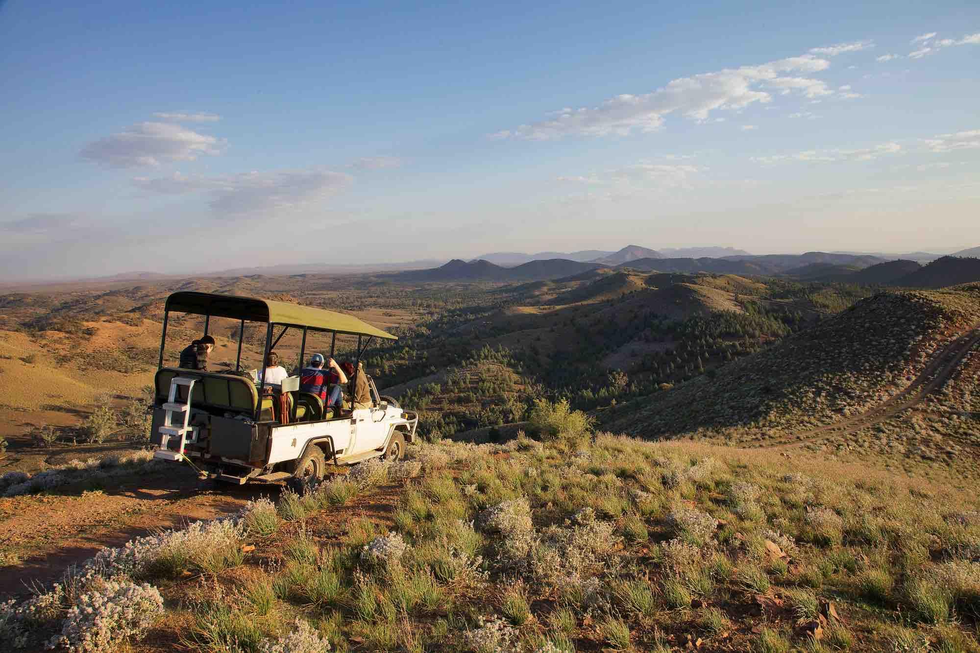 Safari drive at Arkaba